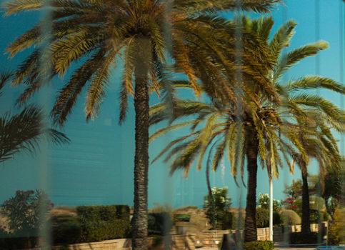 Paisaje. Vídeo y fotografía en Valencia. mementoNET